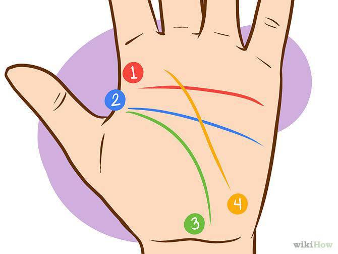 2bc26b86cc Signes et lignes de la main : comment les lire - Conscience et Eveil ...