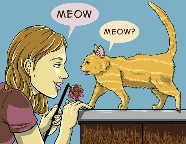 Comment dialogue avec son chat Communicate-with-Your-Cat-Step-3