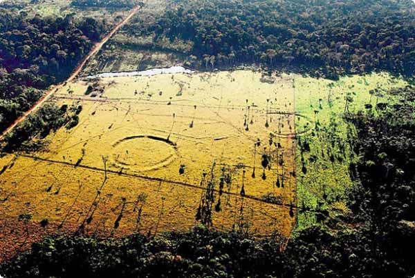 geoglyphes-amazonie