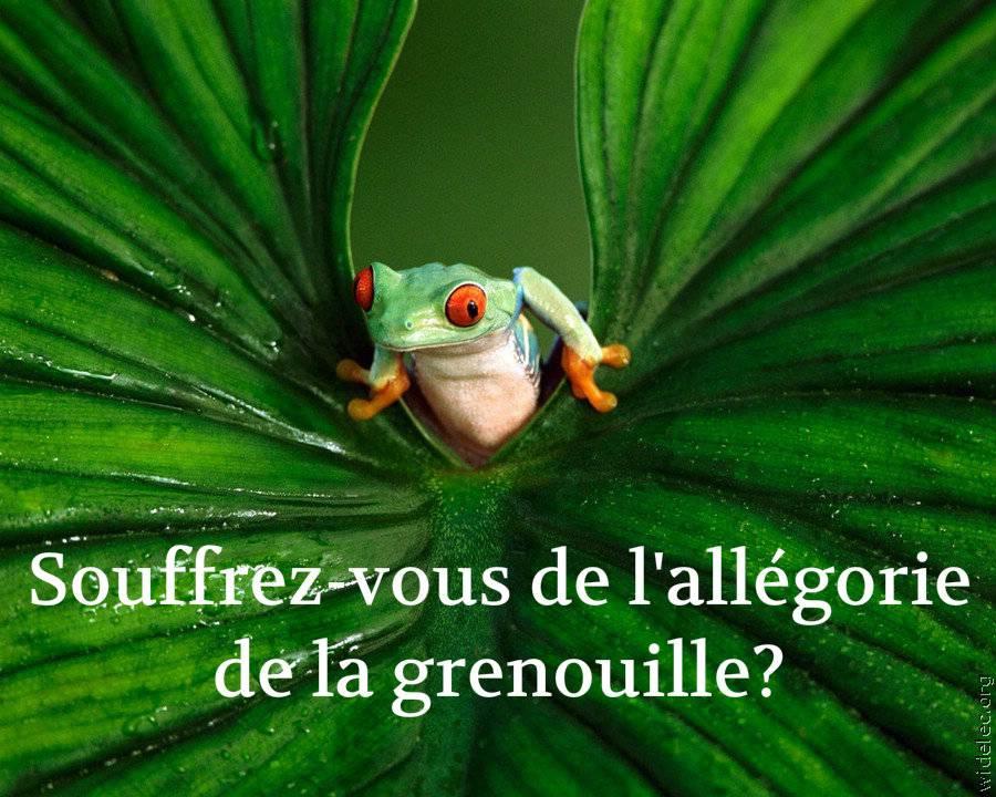 allégorie de la grenouille