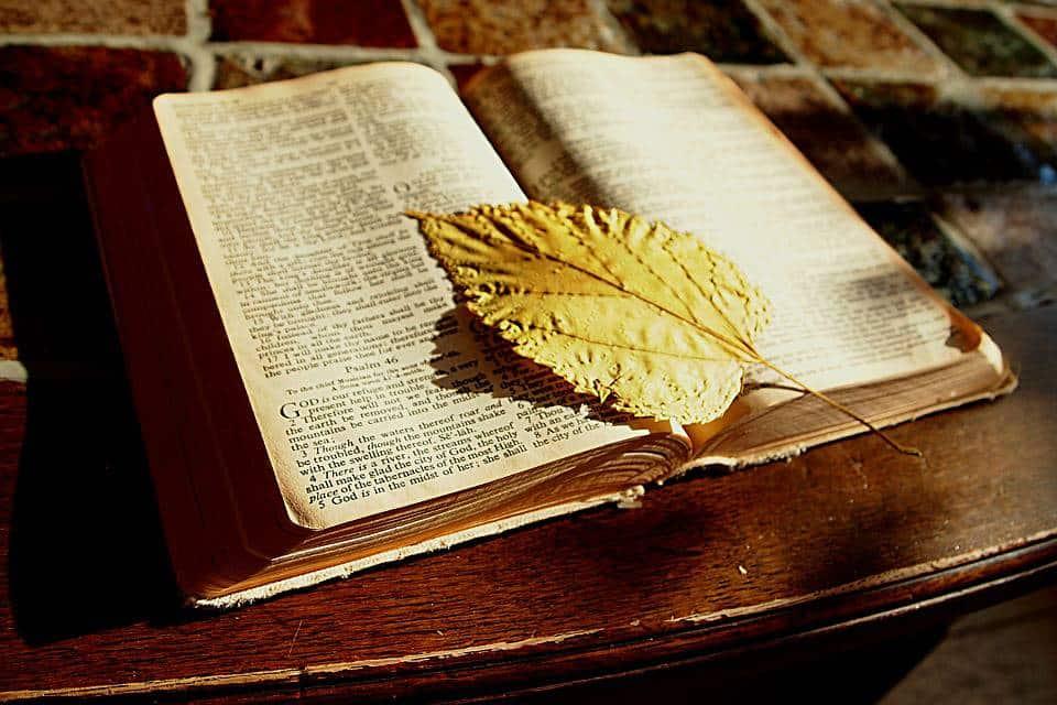 Matrimonio Para Siempre Biblia : Spiritualité livres pour débuter sur la voie spirituelle