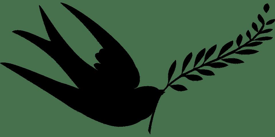 Paix, Avaler, Oiseaux, Silhouette, Vecteur