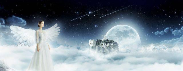 Ah les anges, ces êtres magnifiques, légendaires et imaginaires pour certains, bien réels mais inaccessibles pour d'autres. Ces êtres incroyables qui, soi-disant, portent des ailes… A moins que ce soit la façon dont les hommes les représentent pour symboliser leur aura si lumineuse ?