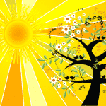 signification Spirituelle du Solstice