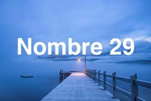 Nombre 29